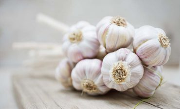 7 powodów, dla których warto jeść czosnek