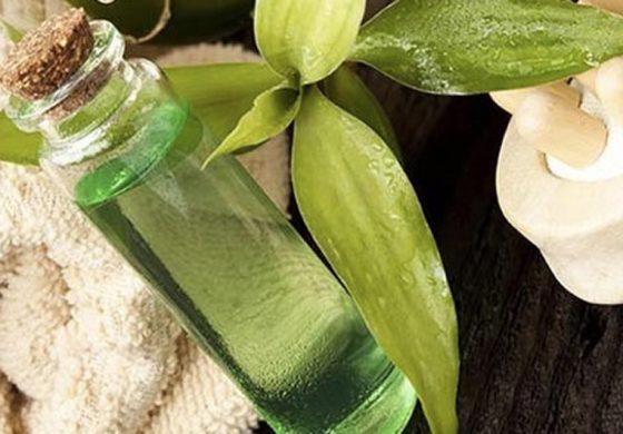 15 niezwykłych zastosowań olejku z drzewa herbacianego