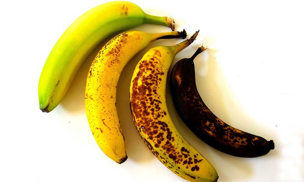 Jakiego banana zdrowiej zjeść? Lekko zielonego czy zupełnie dojrzałego?