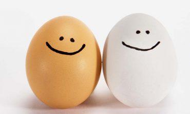 Czy powinniśmy mieć wyrzuty, że spożywamy dużo jajek?