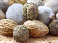 Triphala - indyjski lek na cukrzycę, raka i demencję