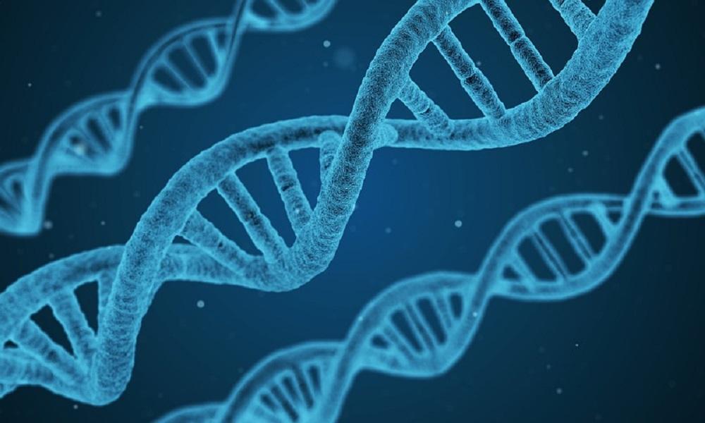 Epigenetyka i rak piersi, czyli jak możesz wpływać na ryzyko wystąpienia nowotworu