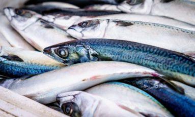 Gatunki ryb, których powinno się unikać + zdrowsze opcje