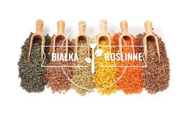 Roślinne źródła białka - pytania i odpowiedzi