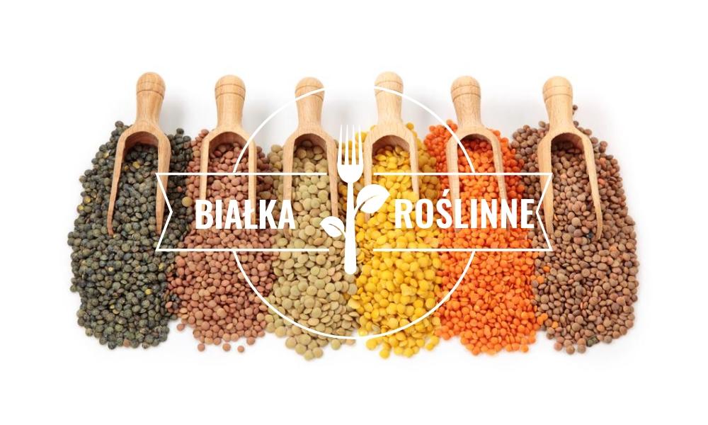 Najlepsze źródła białka na diecie roślinnej