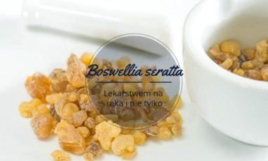 Boswellia seratta: lekarstwo na raka?