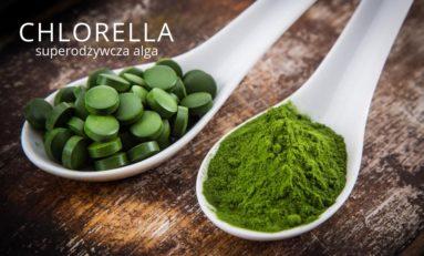 Chlorella – superodżywcza alga usuwająca metale ciężkie z organizmu