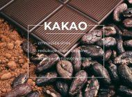 Spożywanie ciemnej czekolady zmniejsza stres i stany zapalne