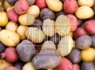 Czy ziemniaki są zdrowe?
