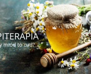 Apiterapia – czy miód to cud?