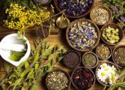 Tradycyjna medycyna ludowa z Pakistanu ma duży potencjał przeciwzapalny
